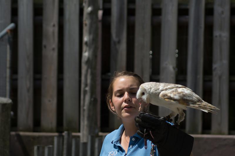 5-30-2013 Stone Zoo 017.jpg