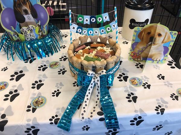 dog-parties