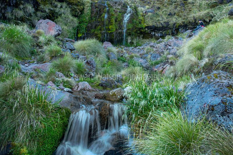 Soda springs Tongariro Crossing