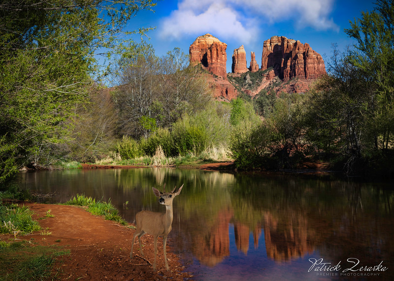 Red Rock Crossing Sedona Arizona 2019