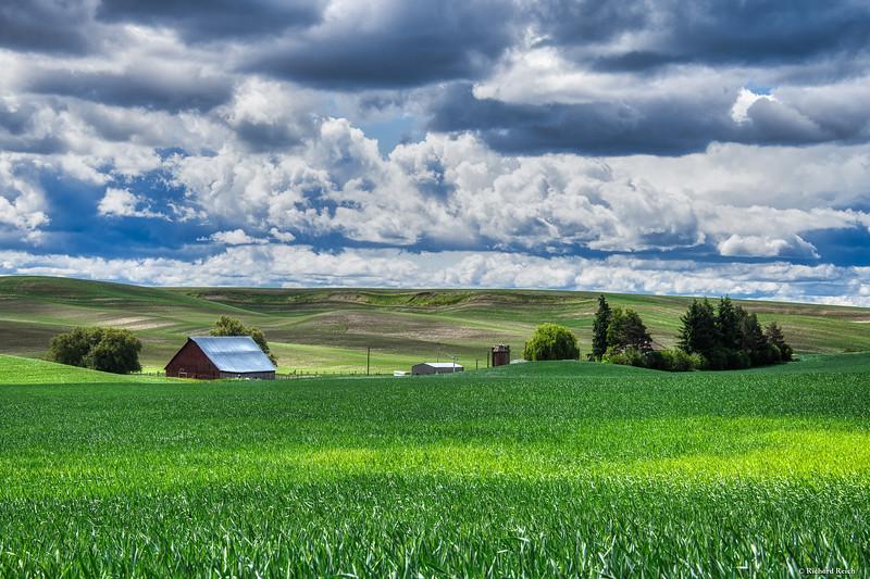 Palouse farm 2--3.jpg
