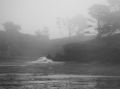 Monterey Diving July 2017