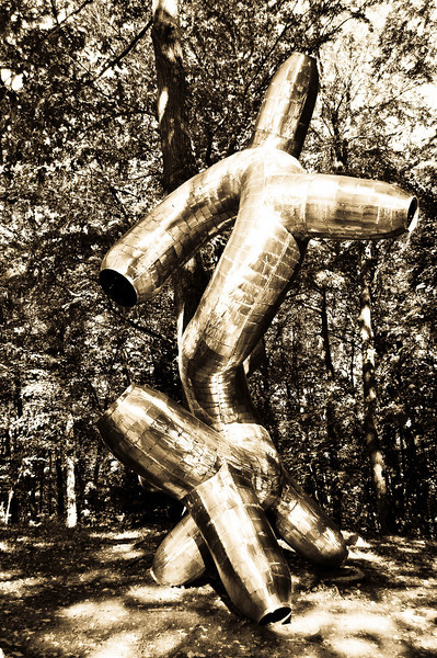 Another PoV on the S shaped sculpture in the woods at DeCordova Museum and Sculpture Park in Lincoln Mass.