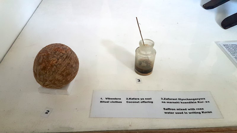 Worst Museum in the World - coconut