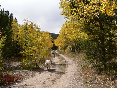 Upper St Vrain Creek September 2006