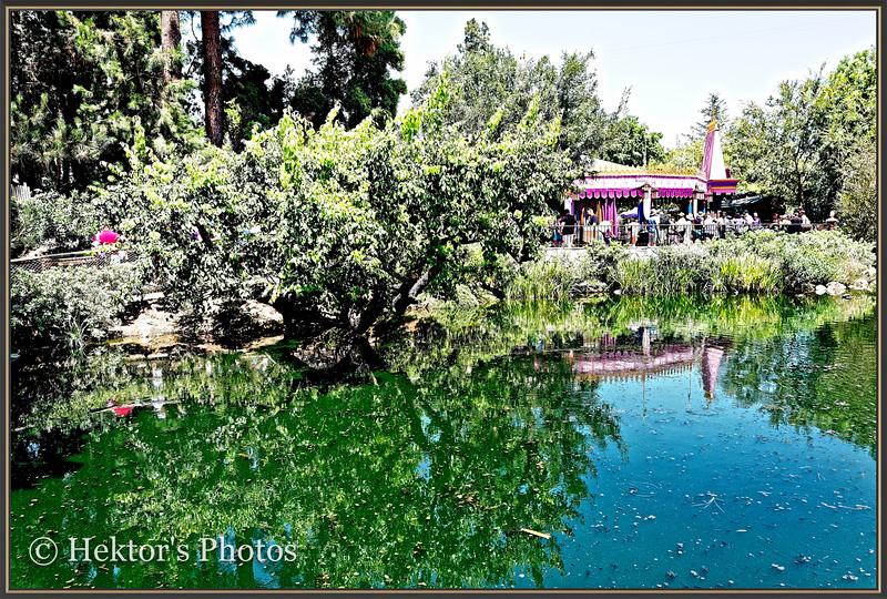 Disneyland Leica Q-14.jpg