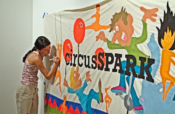 circusSPARK 2010 Planning