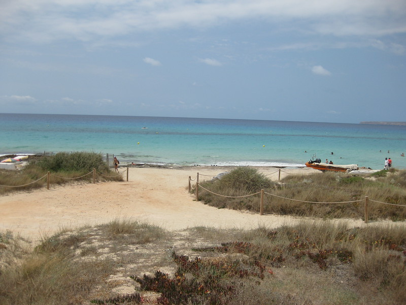 Formentera beach with grassy hillocks and a turquoise colored sea.