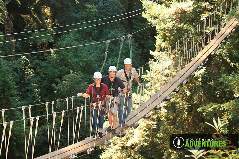 redwood_bridge_1473460021263.jpg