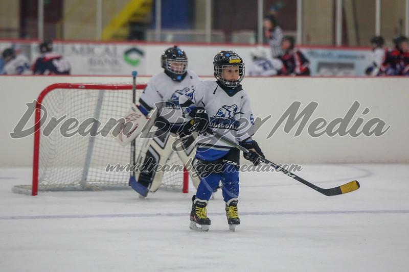 Blizzard Hockey 111719 7749.jpg