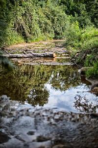 Banita Creek  (28)