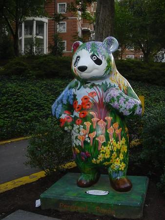 Pandas in Washington D.C.