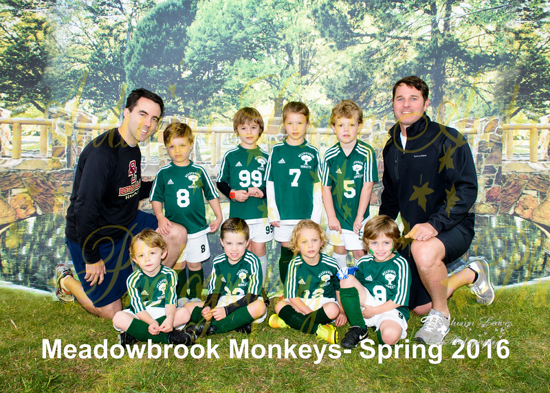 PreKB Monster Monkeys - TNYMCA Soccer Spring 2016