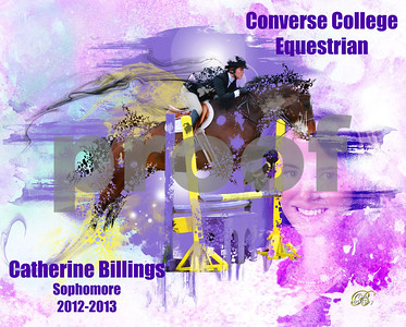Equestrian Collages