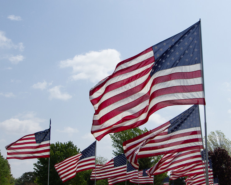 Flags-4.jpg