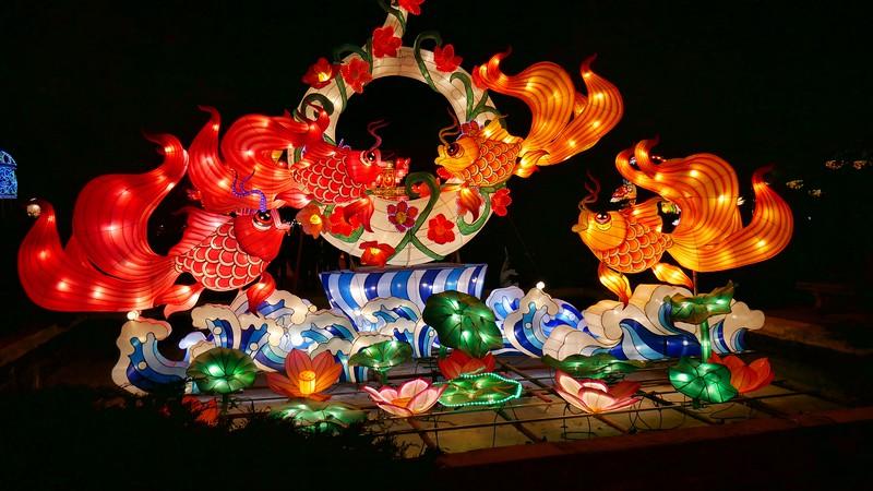 China Lights 2019