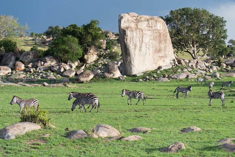 Africa  - 101016- 065.jpg
