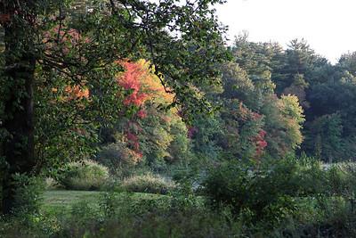 Leaf Peeping around Sudbury