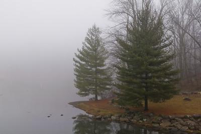 Barto Fog - Jan_13_2013
