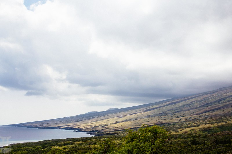 Maui Hawaii-23.jpg