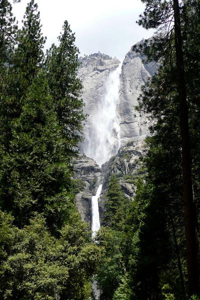 Upper and Lower Yosemite Falls. Yosemite NP