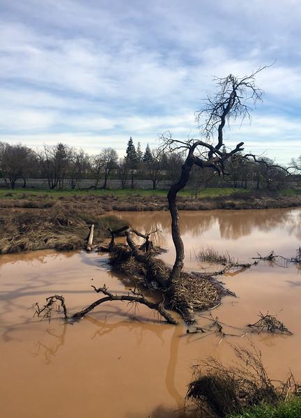 big muddy.jpg