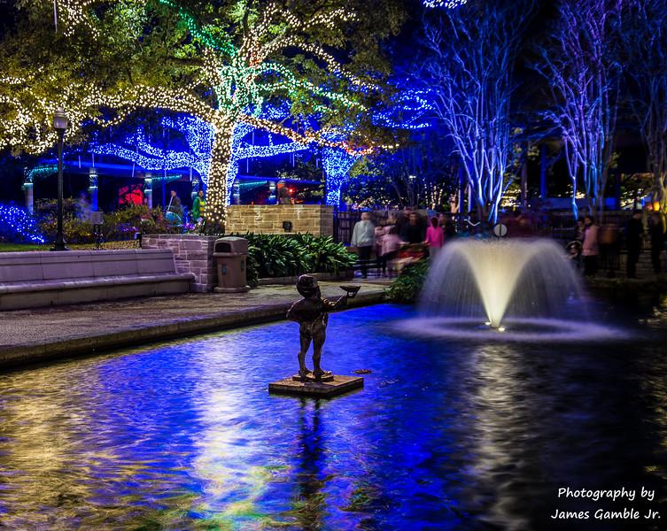 Houston-Zoo-Lights-2929.jpg