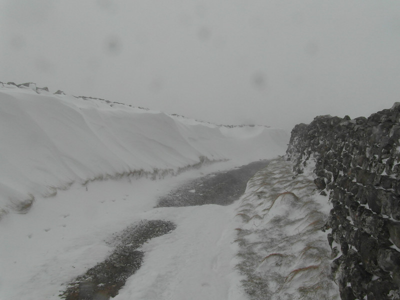 The long lane was full of interesting snowdrifts