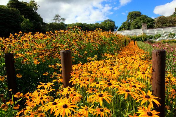 Cornwall Sept 2013