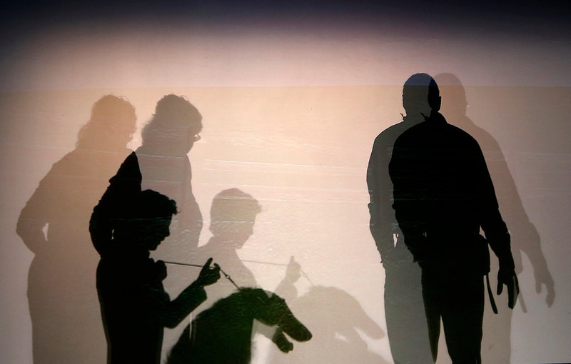 . Silhouettes of people and a dog are seen backstage before the start of the New Yorkie Runway Doggie Fashion Show in New York February 7, 2013. REUTERS/Shannon Stapleton