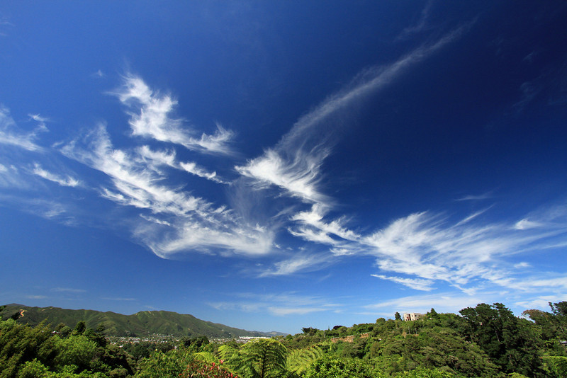Cirrus clouds over Lower Hutt, 10:30am (approx), 23 December 2010.