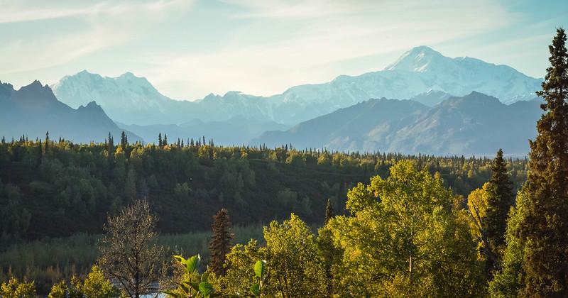 Denali-National-Park-167.jpg