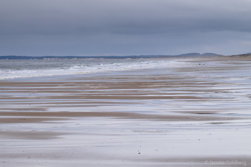 reflections on wet sand