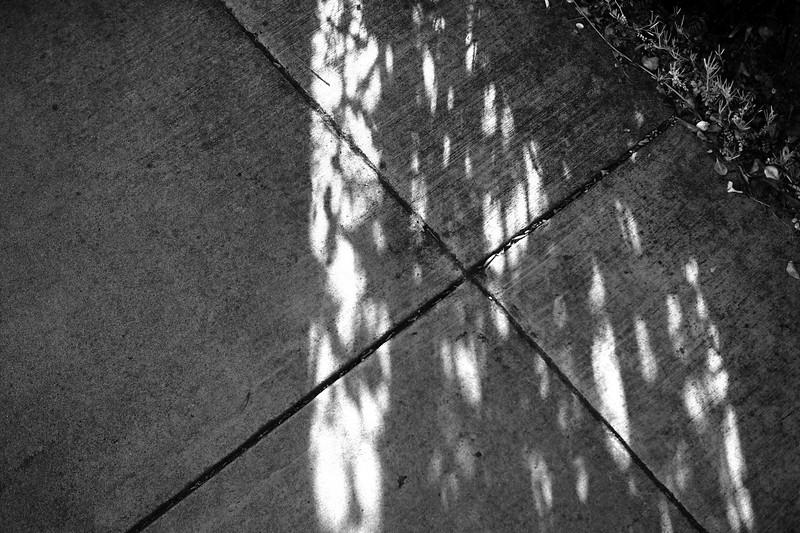 20200415_shadow-pavement_bw.JPG