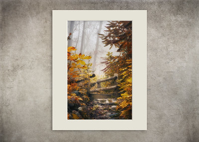Misty Footbridge - $12