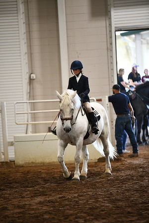6 Open youth obstacle under saddle