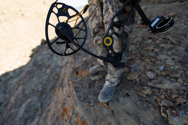 Mathews add to Image Relay (5/month for 2020/21)