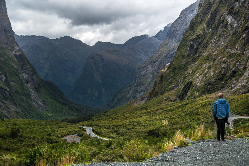 Clint staring at milford road-1.jpg