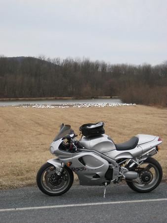 Ride pics 2009