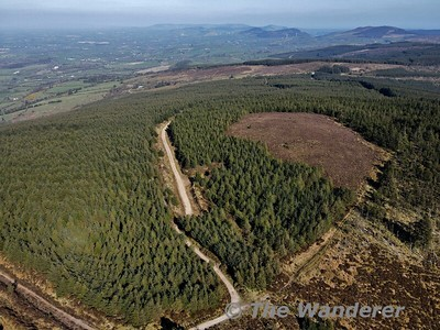 The Knockanroe Wood Loop, Silvermines. Co. Tipperary