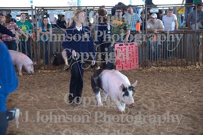 2011 Klein ISD Swine Show Class 4