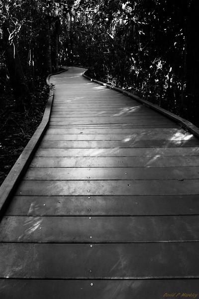 Refuge Trail