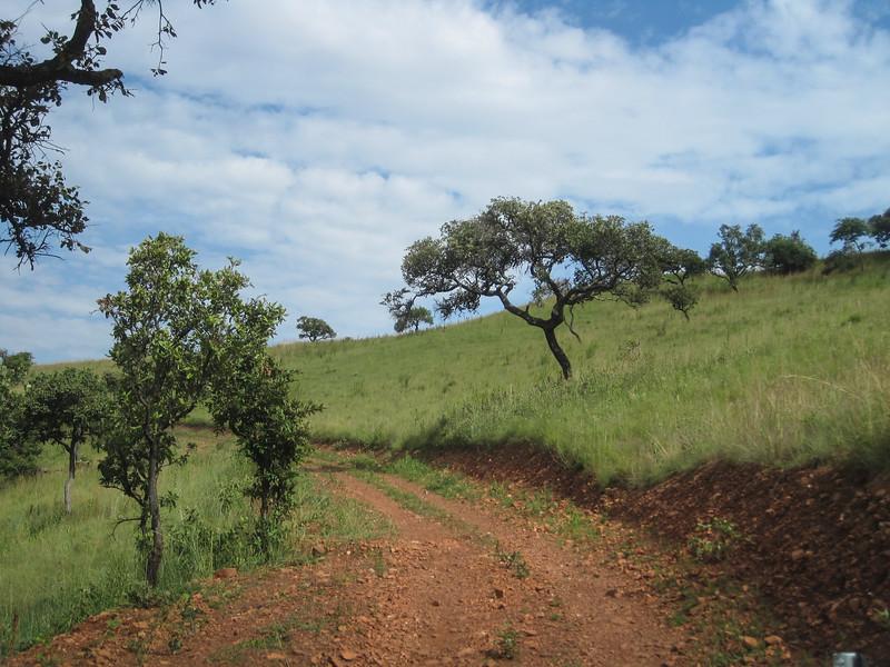 Rwanda_17_ixus-9484.jpg
