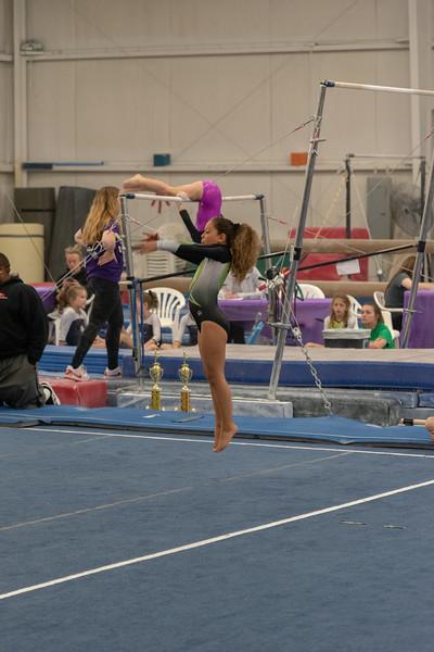 Brianna Gymnastics-0318.jpg