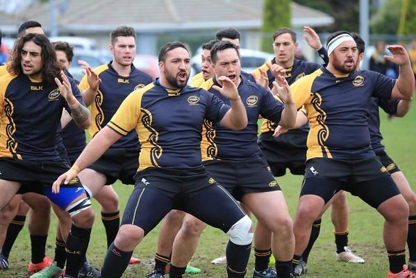 15 Aug Festival Series Wgtn Suburbs (41) v Wgtn Maori (36)