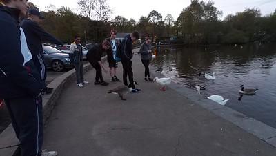 Duck Walk May 2015