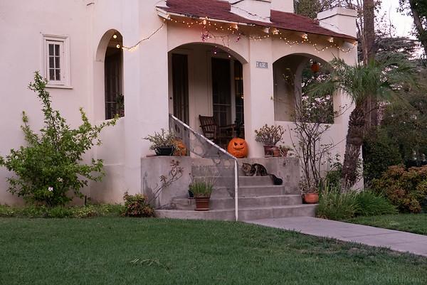 11/24/18 Halloween, Triforium, Pasadena