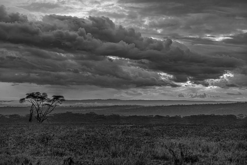 Kenya-102013-1368-Edit.jpg