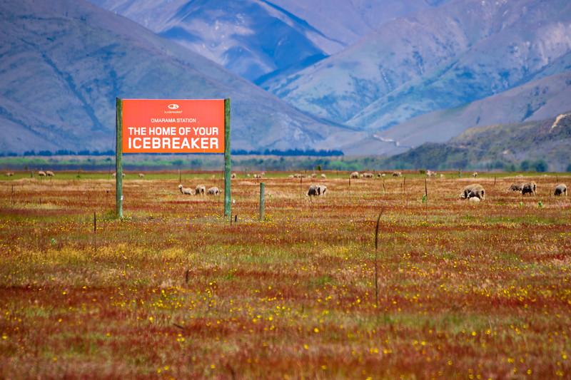 The Home of Icebreaker