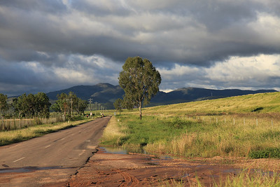 20110110 Road trip dziobaki i inne - Eungella